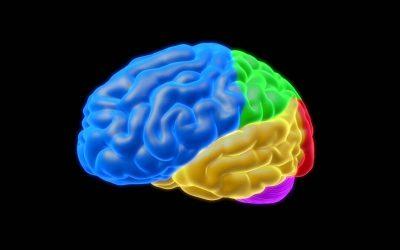 Blood-brain barrier integrity in dementia